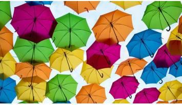 ¿Cuáles son los paraguas más raros del mundo?