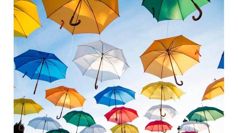 ¿Cuáles son las diferencias entre un paraguas bueno y otro malo?